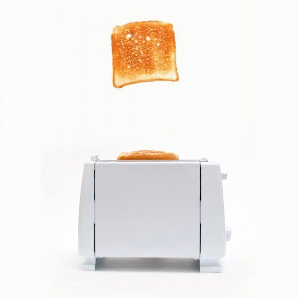 toster-za-hlyab-2