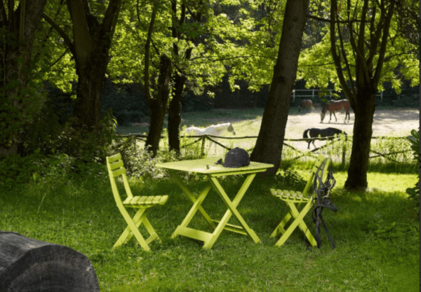 stol-sgavaem-zelen